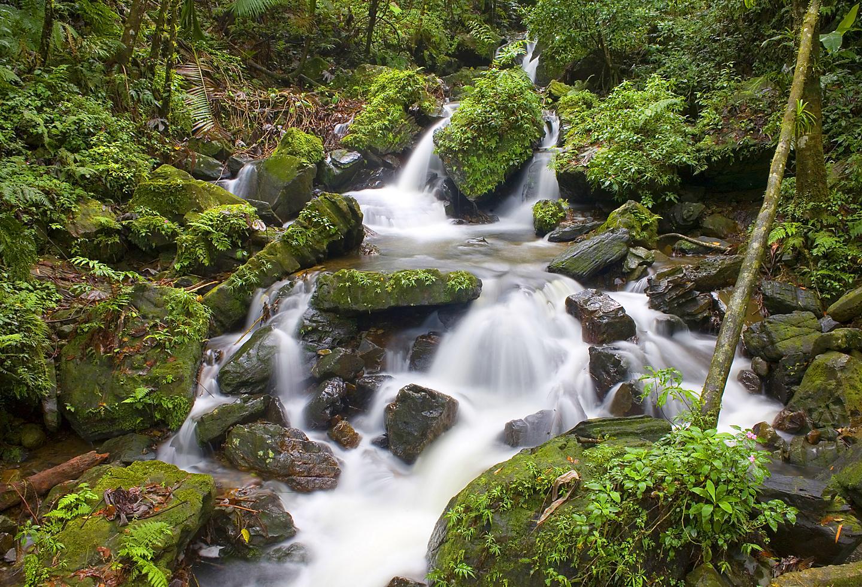 Puerto Rico El Yunque Waterfall