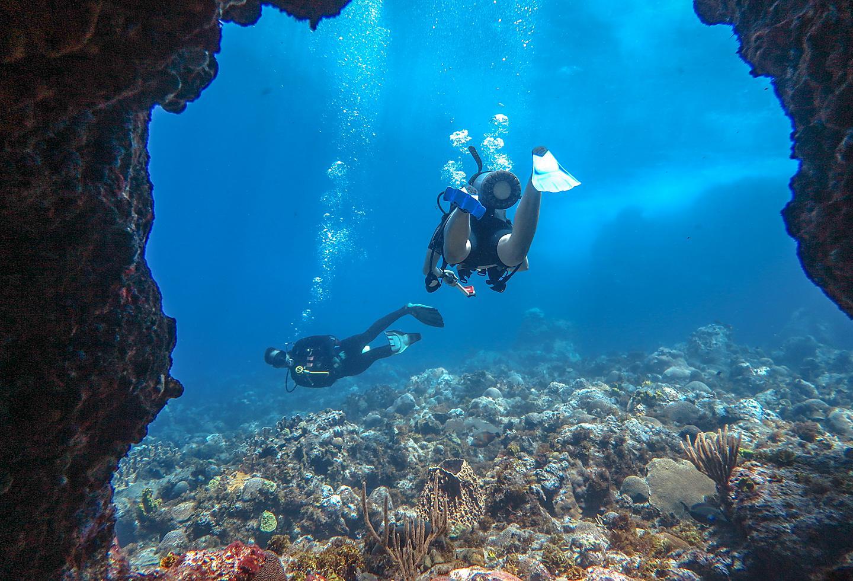 Puerto Rico Scuba Diving Coral Reef