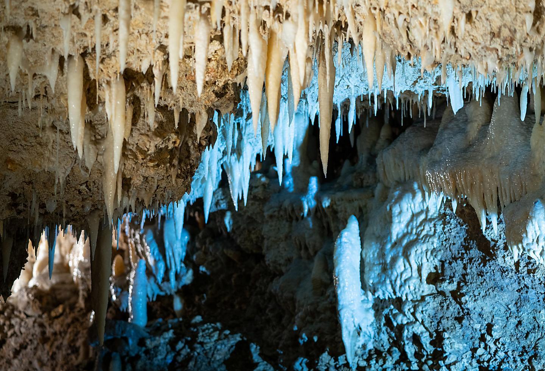 Cave Shore Excursion in Bridgetown Barbados