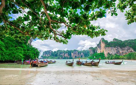 Traditional Boats Docked by the Shore