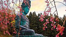 Aomori Japan Seiryuji Big Buddha Statue