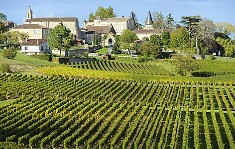 France Vineyards of Saint Emilion