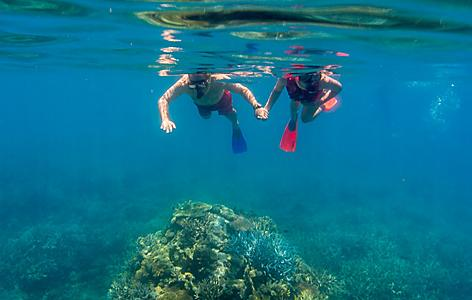 Cairns Australia Great Barrier Reef Couple Snorkeling