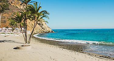 Palms Beach Blue Ocean Catalina Island Descanso  Beach Avalon California