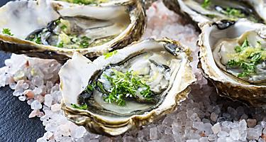 Eden Australia Fresh Oyster Local Seafood