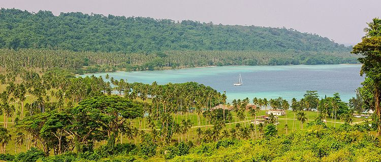 Forest and Coast of Luganville Vanuatu