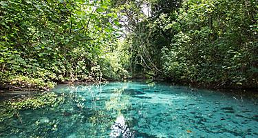 Crystal Clear Waters in Vanuatu's Blue Hole