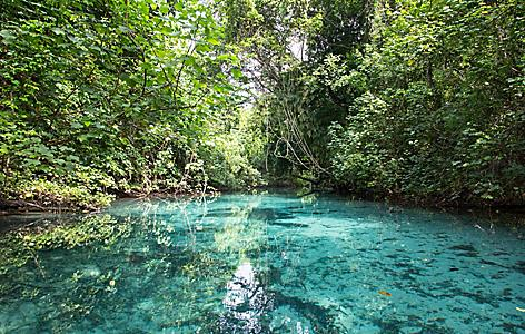 Crystal Clear Waters in Vanuatu's Blue Hole