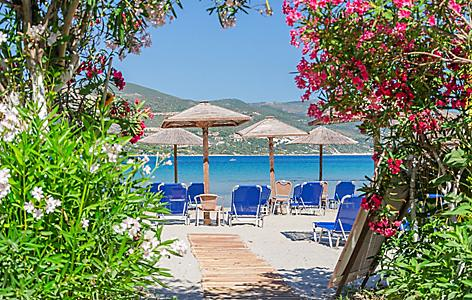 Picturesque sandy beach in Alykanas full of beautiful flowers and plants.