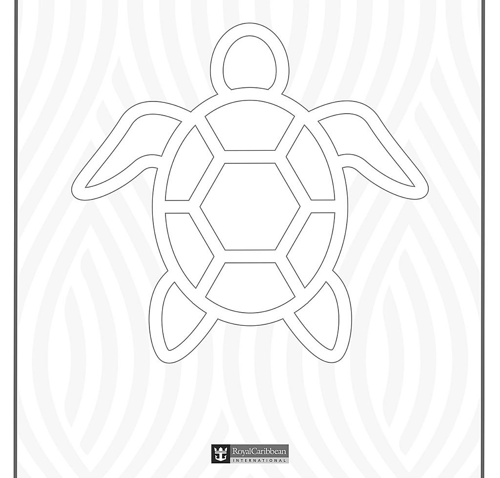 Kids Coloring Book Turtle